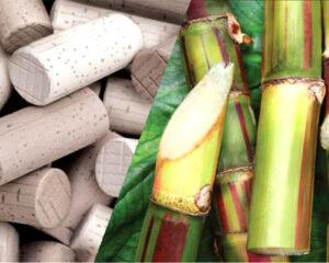 Экологичные и инновационные пробки для вина
